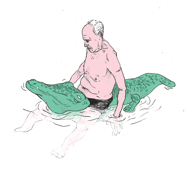 krokodil_web
